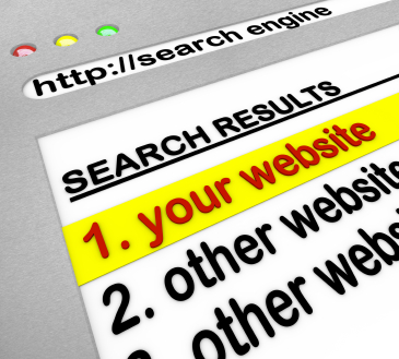 SERP results site